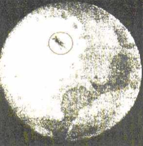 the first photograph of a UFO, 1883
